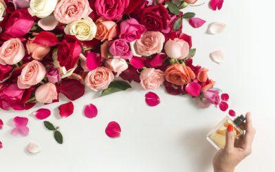 Rosas y Perfumes